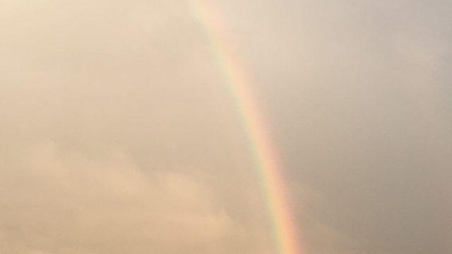 ゆたぼんと虹